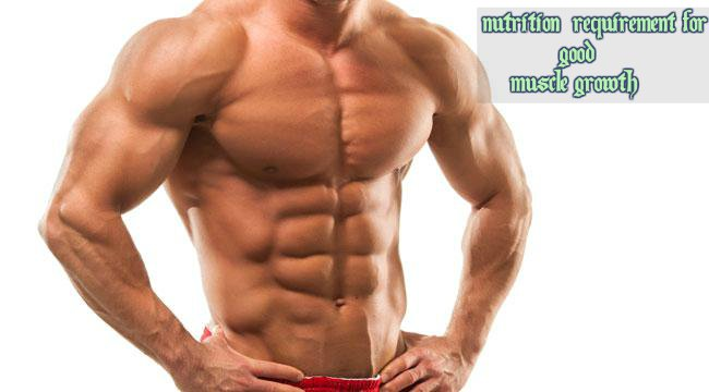 Nutrition muscle growth